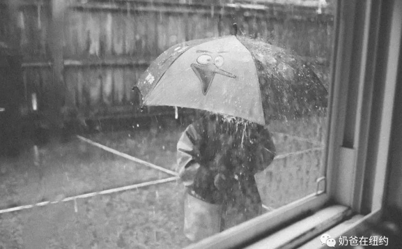 感受倾盆大雨